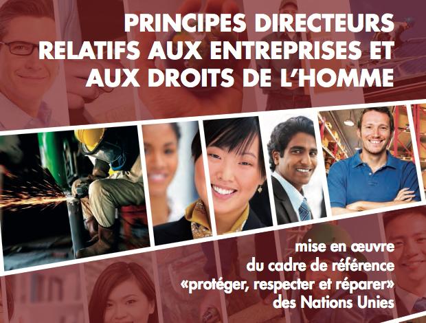 PRINCIPES DIRECTEURS RELATIFS AUX ENTREPRISES ET AUX DROITS DE L'HOMME