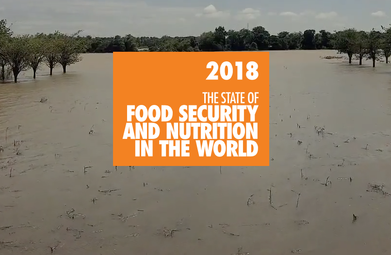 FAO — Food Security & Nutrition around the World