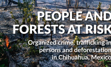 The Global Initiative Against Transnational Organized Crime —  PEOPLE AND FORESTS AT RISK Organized crime, trafficking in persons and deforestation in Chihuahua, Mexico