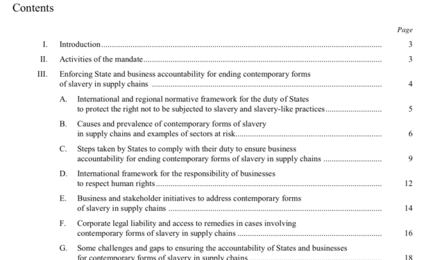 Enforcing State and business accountability for ending contemporary forms of  slavery in supply chains — Report of the Special Rapporteur on contemporary forms of slavery, including its causes and consequences, Urmila Bhoola