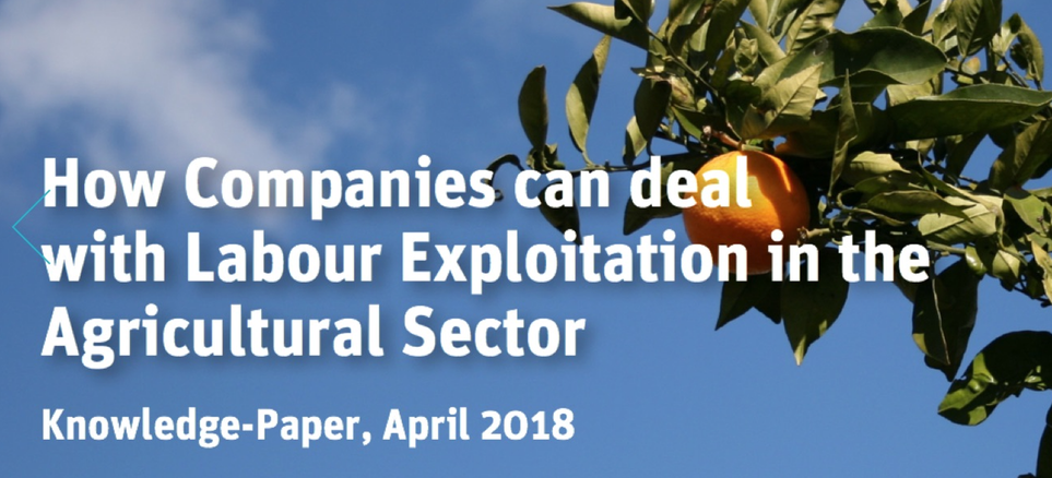 LÖNING — Human rights. Business. The future. How Companies can deal with Labour Exploitation in the Agricultural Sector?